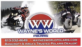 Waynes World Logo